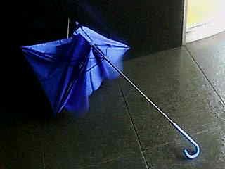 私の傘はこんな姿に!